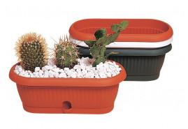 květináč kaktusový